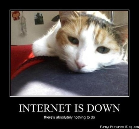 3194-Internet-is-down